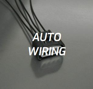 Auto Wiring 4AGE